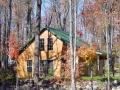 cabin 1 Bear.jpg